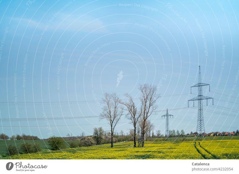 Strommasten,  blühendes Rapsfeld, Bäume, Wiesen und der Himmel im Frühling Natur Landschaft Flora Pflanze Energie Stromkabel Stromversorgung Feld Landwirtschaft