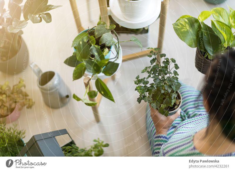 Junge Frau, die sich um ihre Topfpflanzen zu Hause kümmert Floristik Pflege Gesundheit Blüte Gartenbau Flora botanisch Dekoration & Verzierung Botanik wachsen