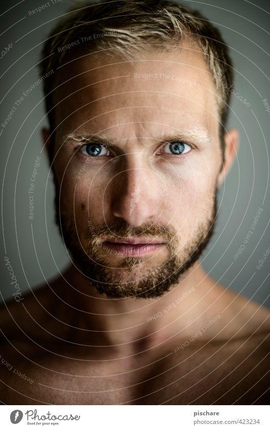 Kopf-Akt maskulin Mann Erwachsene Gesicht 1 Mensch 30-45 Jahre blond Vollbart Blick ästhetisch Selbstständigkeit Farbfoto Innenaufnahme Licht