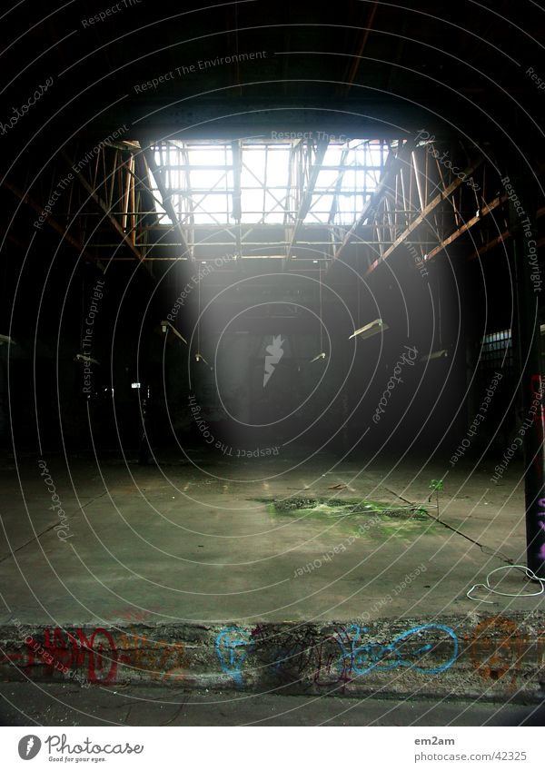 THE NATURE WINS AGAIN grün dunkel Fenster Industriefotografie Dach Quadrat Flucht Evolution