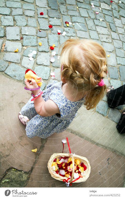 Blumenmädchen III Mensch Kind schön Sommer Mädchen Leben Haare & Frisuren Blüte Feste & Feiern Körper blond Kindheit Hochzeit Lebensfreude Kleid Kitsch