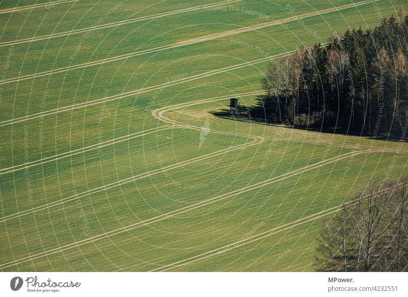 feldversuch Feld Ackerbau Landwirtschaft Spuren Waldrand von oben Vogelperspektive grün Bauer Gras Landschaft Wiese Agrarwirtschaft hochstand Jägersitz