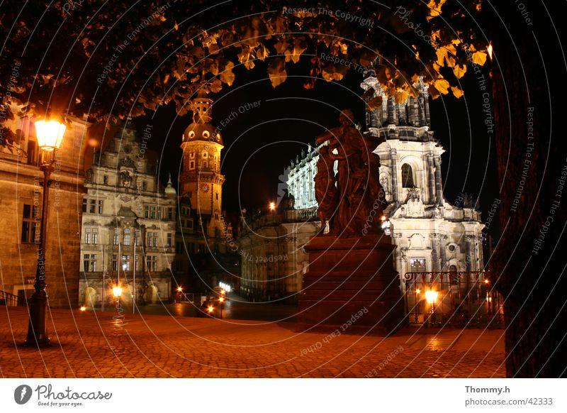 Blick von der Brühlschen Terasse in Dresden Baum Blatt Religion & Glaube Architektur Straßenbeleuchtung