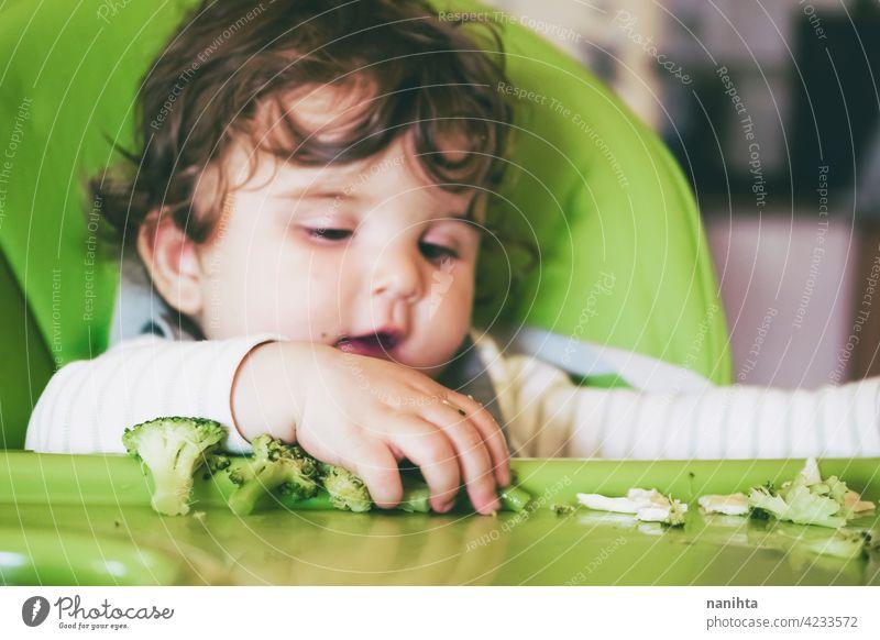 Baby isst Essen in ihrem grünen Hochstuhl blw Baby-Bleiwatte Gemüse Lebensmittel Brokkoli Veganer Vegetarier Gesundheit Diät weiß Kaukasier Beikost füttern
