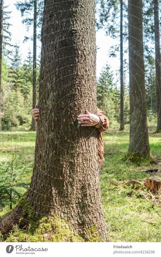 Waldbaden mit Baumumarmung Waldstimmung Stimmung Ruhe entspannung Gesundheit Natur Stimmungsbild natürliches Licht Lichtstimmung Freiheit Tageslicht Stille Arme