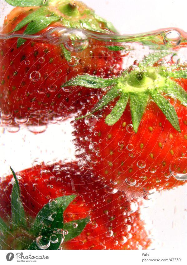 3 Erdbeeren rot grün Stil Vitamin Gesundheit frisch nass feucht Ernährung weiß Unterwasseraufnahme berühren Geschmackssinn lecker Getränk Mineralwasser