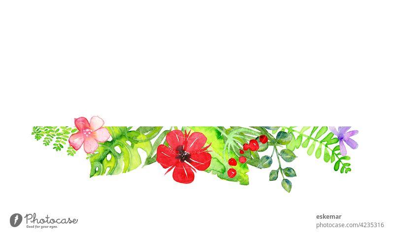 Blumen Aquarell mit Textfreiraum Einladung Rahmen Monstera Eukalyptus Hintergrund weiß weißer Hintergrund Sommer Hochzeit Natur Karte Einladungskarte Blüte