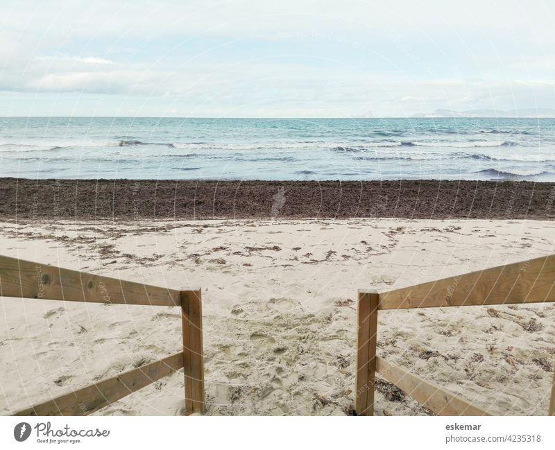 Formentera, Mittelmeer Meer Strand Posidonia Sand Sandstrand Ibiza Balearen niemand menschenleer Wasser Ozean Welle Spanien Europa Cala Saona