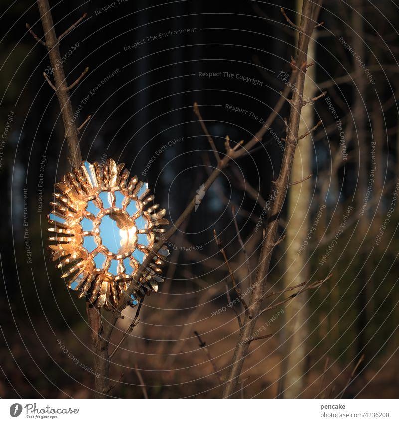 zauberspiegel Wald Himmel gold baum Natur blau äste zaubern Zauberei surreal dunkelheit Hoffnung Spiegelung Reflexion & Spiegelung magisch Magie