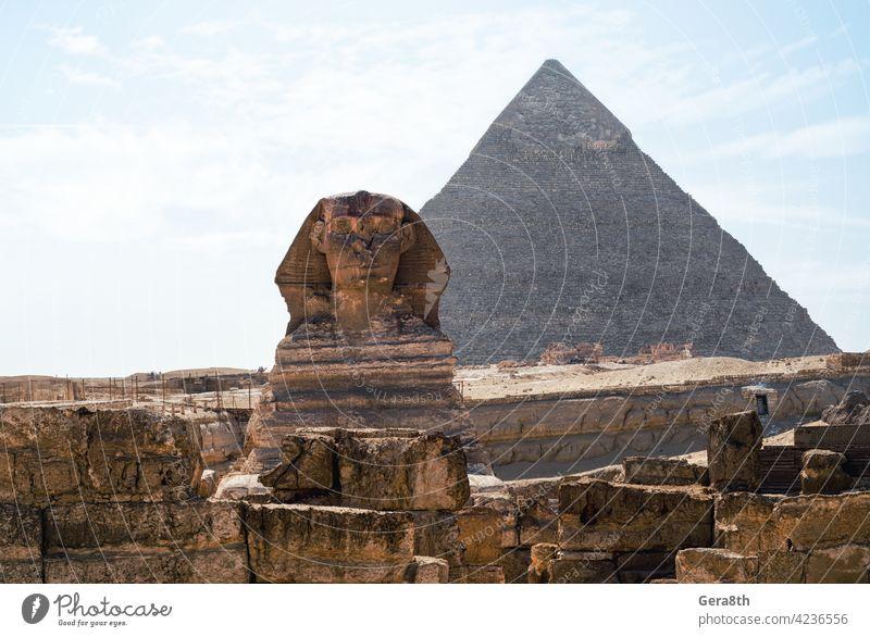 Sphinx-Statue und Cheops-Pyramide in Gizeh Ägypten Afrika cheops Cheops Pyramide Ägypter Sphinx-Denkmal antik Antiquität Archäologie Architektur authentisch
