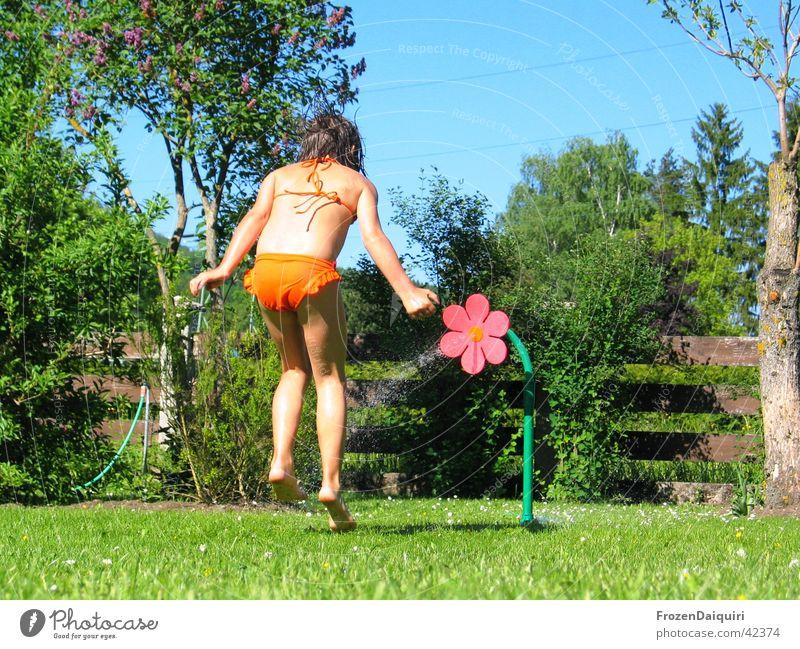 Spritzblume Mensch Kind Wasser Sonne Sommer Freude Wiese Spielen Gras Garten Bikini Schlauch