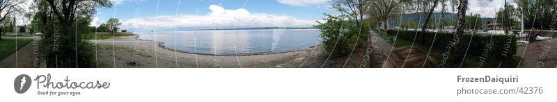Bodenseepanorama Bregenz Strand See Baum Promenade Wolken Reflexion & Spiegelung Bundesland Vorarlberg Panorama (Aussicht) Wasser Wege & Pfade Segelboothafen