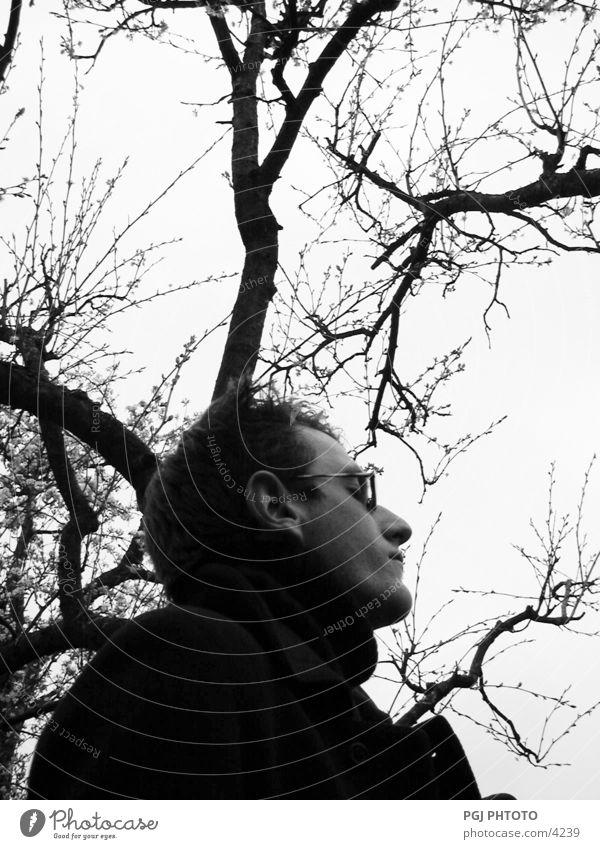 Human tree Mensch Mann Natur Baum Brille