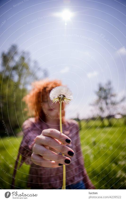 Rothaarige Frau mit Pusteblume im Frühling rothaarig Sommer Natur Naturliebe Löwenzahn Pflanze Makroaufnahme Nahaufnahme Schwache Tiefenschärfe Farbfoto Blume