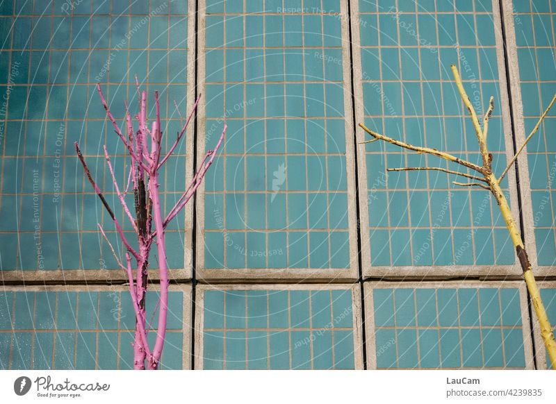 Bunte kahle Bäume vor einer türkisen Kachelwand bunt Kacheln rosa gelb mehrfarbig Fliesen u. Kacheln Farbfoto Wand Muster Fassade Mosaik abstrakt