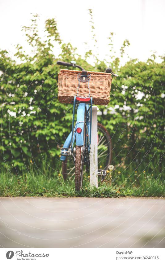 ein abgestelltes Fahrrad mit Korb Fahrradkorb parken Natur Rad Fahrradtour Fahrradfahren Verkehrsmittel Freizeit & Hobby