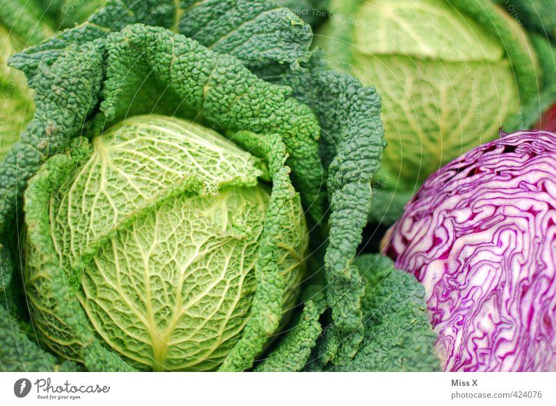 Wirsing Lebensmittel Gemüse Salat Salatbeilage Ernährung Bioprodukte Vegetarische Ernährung Diät frisch Gesundheit lecker grün Rotkohl Kohl Wochenmarkt