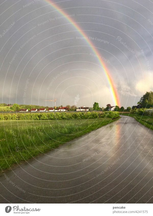 zwischen himmel und erde Wetter Phänomen Regenbogen Himmel Erde Brücke Regenbogenfarben Hoffnung Symbol Schatzsuche Glaube Homosexualität Freiheit Wolken