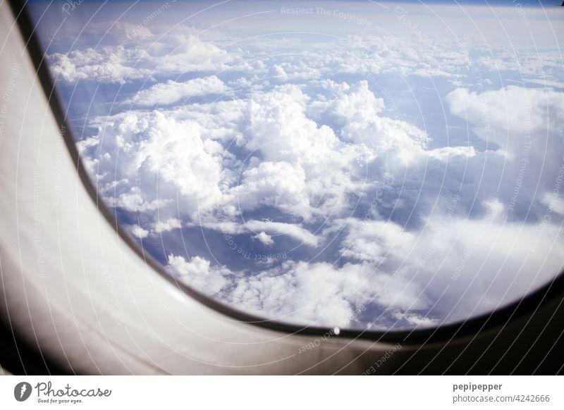 über den Wolken Flugzeug Fluggerät Flugzeugkabine Luftverkehr Himmel fliegen Ferien & Urlaub & Reisen blau Flugzeugausblick Außenaufnahme Passagierflugzeug