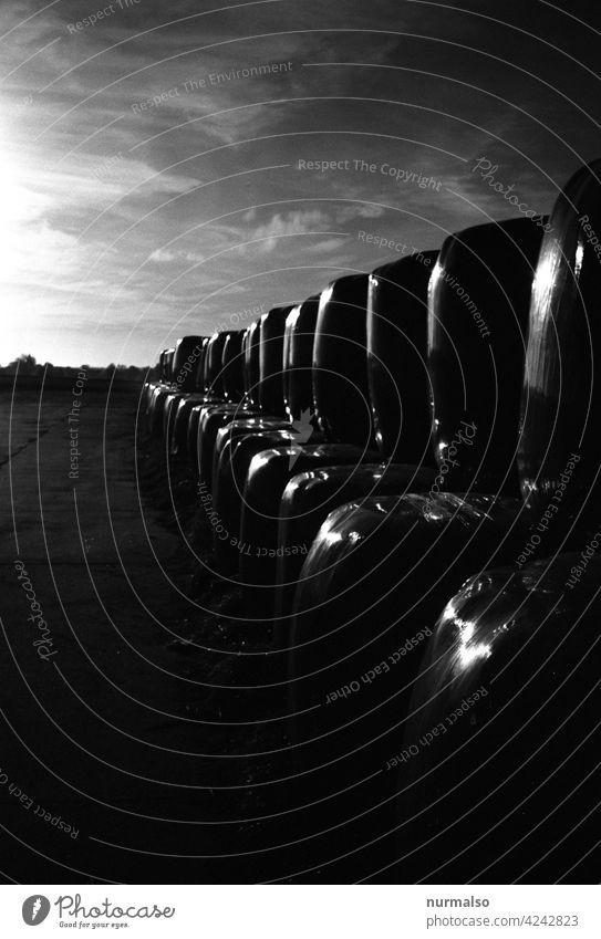 Geballter Schatten Schtten sillage landwirtschaft strohballen verpackt plastik abend analog schwarz weiss kleinbild