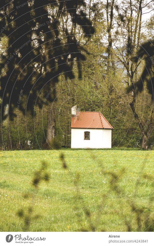 Bittstelle Kapelle Idylle Wiese grün Religion & Glaube Hoffnung Kirche Weide Landschaft Waldrand einsam Trost Gebet beten Christentum Spiritualität Natur Gras