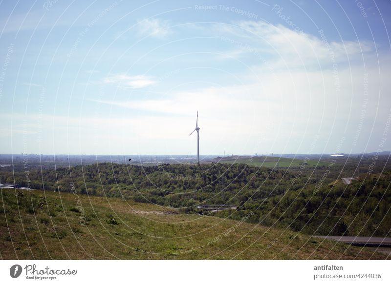 Windrad-Idylle Energie Erneuerbare Energie Energiewirtschaft Windkraftanlage Himmel Elektrizität Umweltschutz Technik & Technologie umweltfreundlich ökologisch