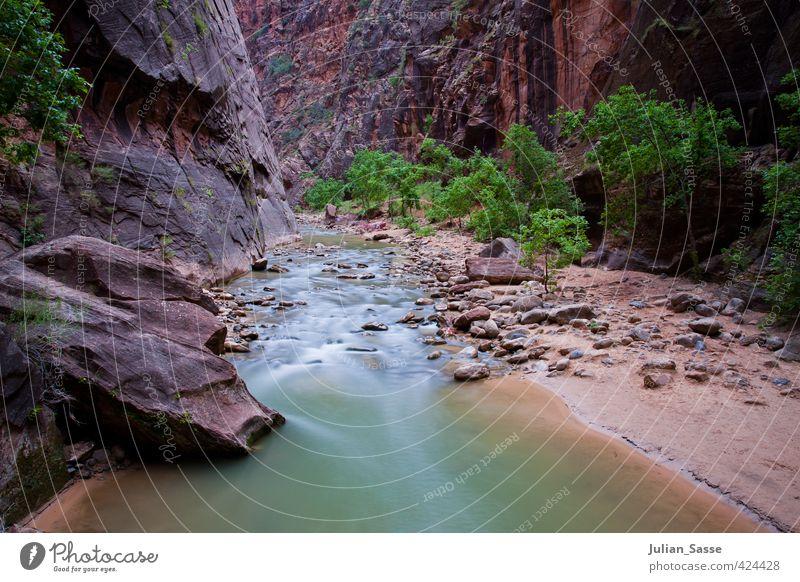 The Narrows Umwelt Natur Landschaft Pflanze Sand Wasser Schlucht einzigartig Utah Zion National Park Fluss Langzeitbelichtung Stars and Stripes ruhig Erholung