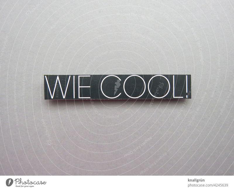 Wie cool! Coolness Jugendliche Sprache Kommunizieren Schriftzeichen Wort Buchstaben Typographie Text Kommunikation Verständigung Mitteilung Letter abgeklärt