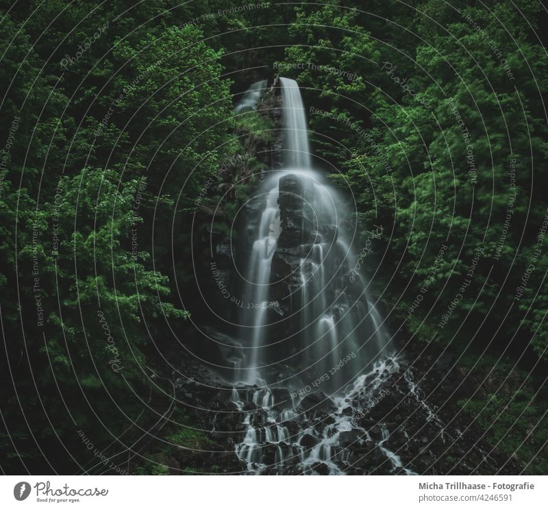 Trusetaler Wasserfall / Thüringer Wald Thüringen Felsen Stein Gestein Bäume Treppe Geländer Azfstieg Landschaft Natur Tourismus wandern Ferien & Urlaub & Reisen