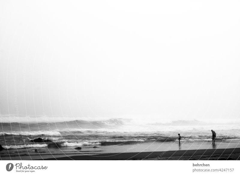 kraft und ruhe Schwarzweißfoto Unschärfe Kontrast Licht Tag Außenaufnahme außergewöhnlich Schwimmen & Baden Südafrika knysna Meer Bucht Strand Küste Wellen