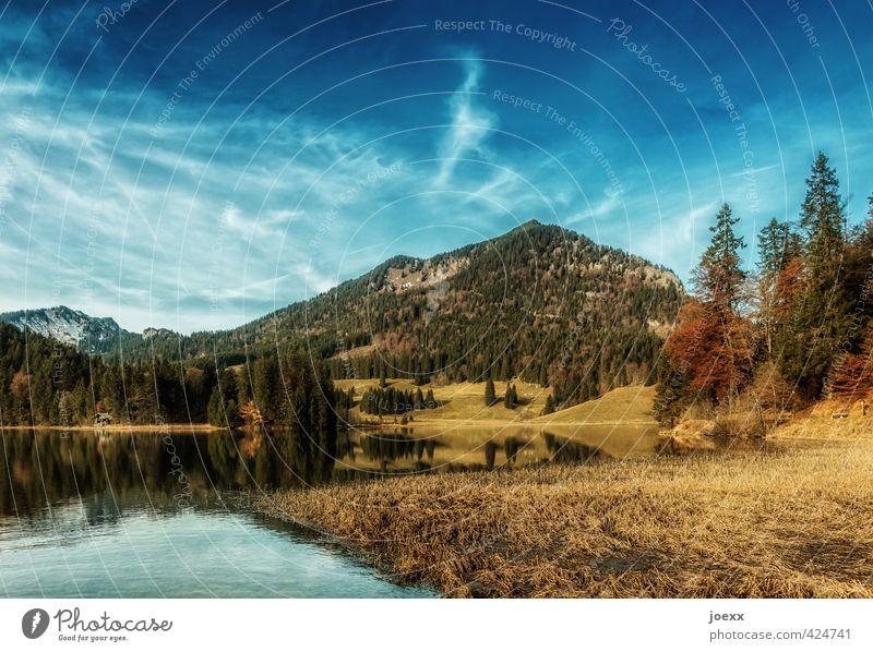 Spitzingsee Himmel Natur Ferien & Urlaub & Reisen blau schön grün Wasser Sommer ruhig Landschaft Wolken Wald gelb Umwelt Berge u. Gebirge Wiese