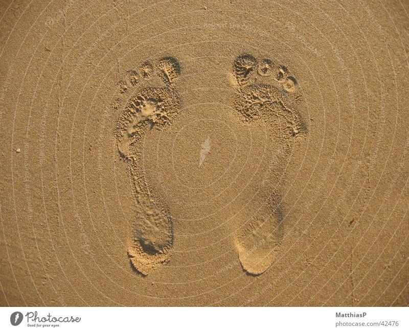 Füße im Sand Mensch Mann Sonne Sommer Meer Strand Küste klein 2 Fuß Zusammensein gehen sitzen laufen groß paarweise