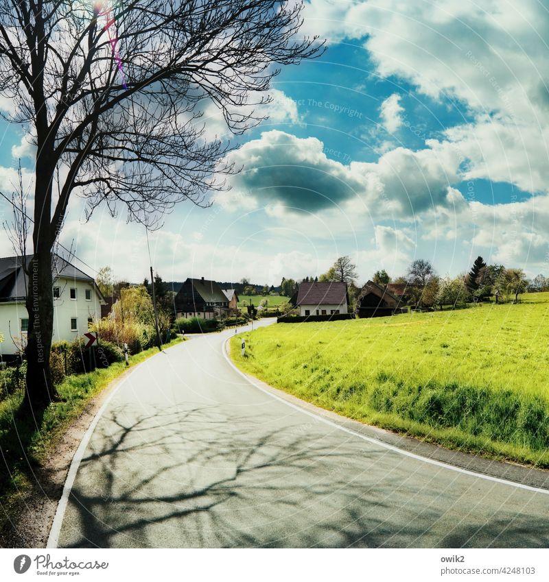 Weiler Dorf Kurve Asphalt leuchtend Häuser Dächer Lausitz Sachsen Sonnenlicht glänzend Landschaft Natur Gras Wiese Horizont Umwelt Schönes Wetter