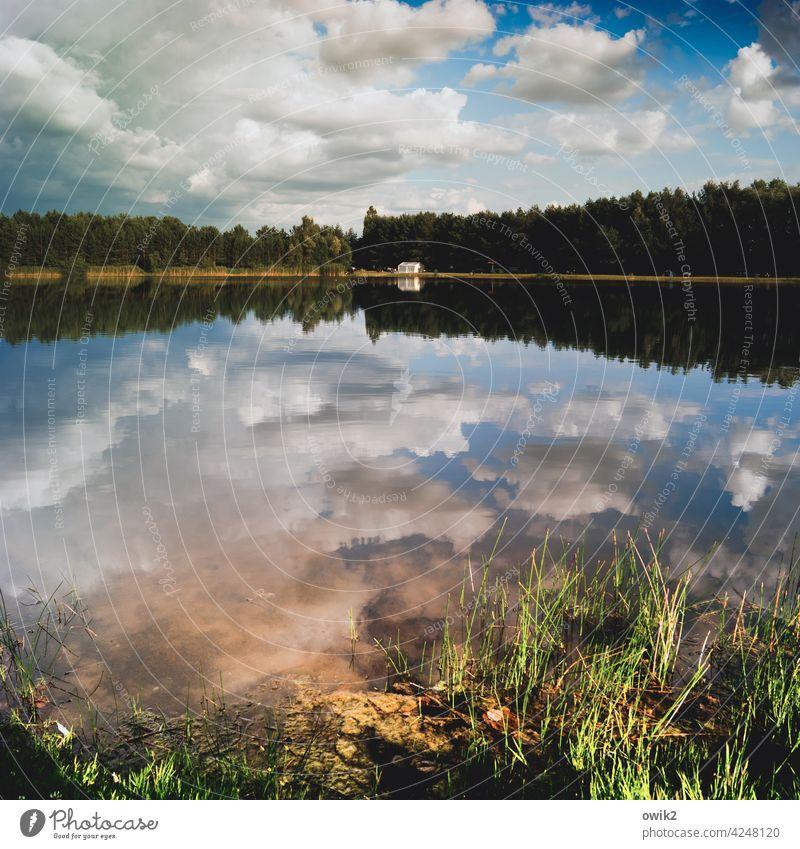 Ruhevoll Seeufer Reflexion & Spiegelung Umwelt Natur Schönes Wetter Idylle Farbfoto friedlich Außenaufnahme Menschenleer ruhig Wasser Wasseroberfläche Totale