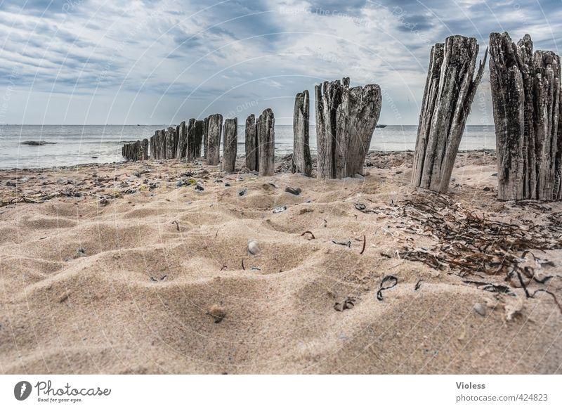 ...zahn der zeit Himmel Natur Ferien & Urlaub & Reisen alt Wasser Sommer Sonne Meer Erholung Landschaft Wolken Strand Küste Sand Wellen Tourismus