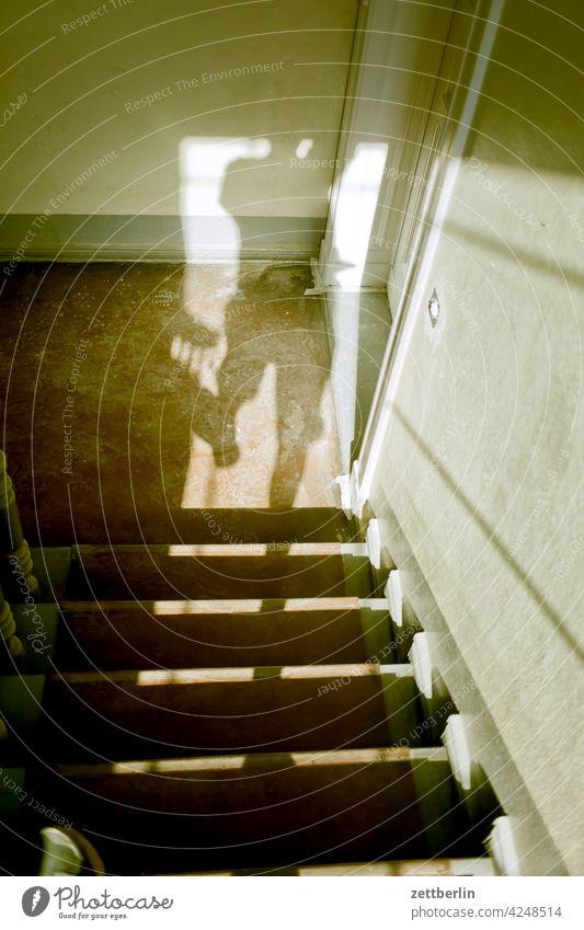 Schatten auf der Treppe absatz abstieg abwärts altbau aufstieg aufwärts fenster geländer haus licht mann mehrfamilienhaus mensch menschenleer mietshaus schatten