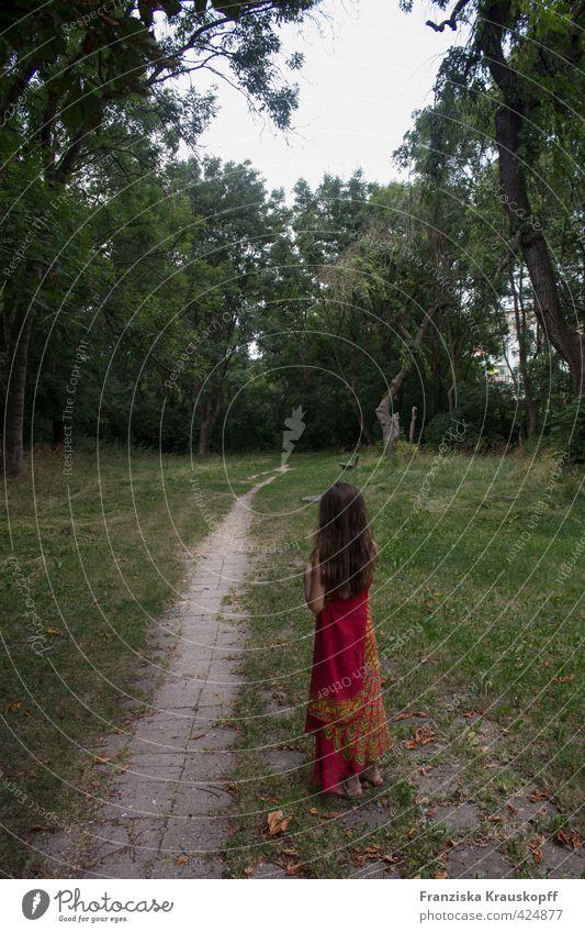 Inderin in Brandenburg Mädchen Kindheit Körper Haare & Frisuren 1 Mensch 8-13 Jahre Umwelt Natur Landschaft Pflanze Sommer Schönes Wetter Baum Blume Gras