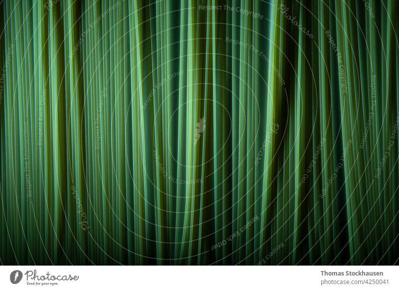 grün gefärbte Spaghetti in einer Reihe als Hintergrund abstrakt Kunst schwarz Nahaufnahme Konzept Essen zubereiten Kopie Ernte Küche Kultur lecker Diät