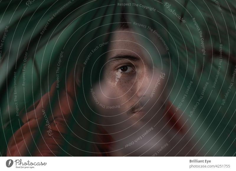 Porträt eines jungen Mannes hinter Palmenblättern aufstrebend Menschliches Gesicht Park Blick Stil ernst junger Erwachsener Schönheit in der Natur einzeln