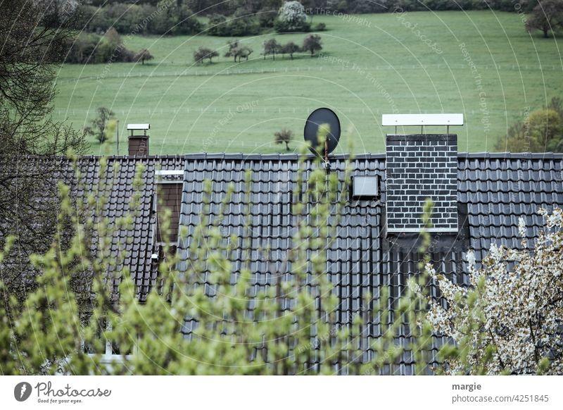 Dächer mit Schornsteinen und Satellitenschüssel, dahinter Wiesen und Wälder Dach Haus Dachziegeln Sattelittenschüssel Antenne Außenaufnahme Menschenleer Tag