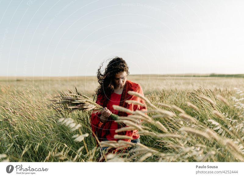 Frau pflücken halten Blumen auf dem Feld 30-45 Jahre schön Vorderansicht Kaukasier feminin Tag Außenaufnahme Junge Frau Erwachsene Mensch Farbfoto Jugendliche