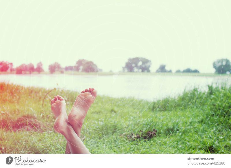 am fluß Natur Ferien & Urlaub & Reisen Sommer Sonne nackt Erholung ruhig Leben Schwimmen & Baden Zufriedenheit Ausflug Pause Lebensfreude Sonnenbad Fahrradtour