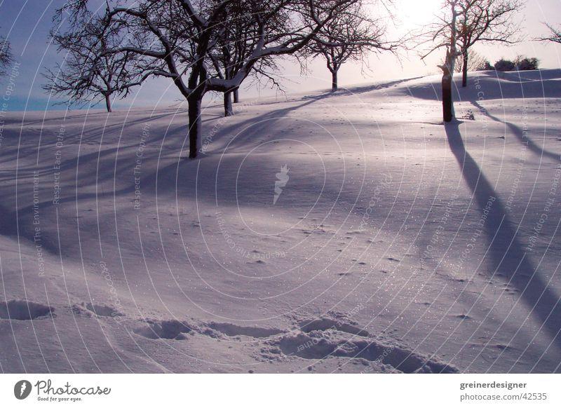 winterlandschaft Gegenlicht Winter Fußspur Berge u. Gebirge Schnee