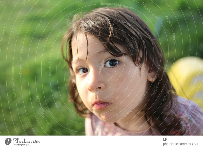 neugieriges Mädchen schaut in die Kamera zuschauend Überraschung spielerisch Person Blick Aussehen Lernen Kind Gesicht Augenlicht Bildung Fundstück Neugier
