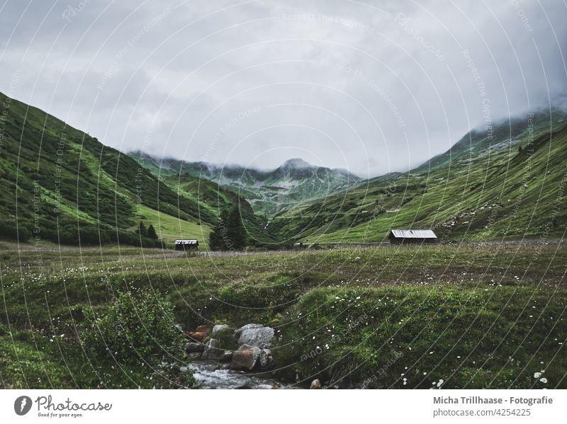 Alpenlandschaft im Nebel / Österreich Komperdell / Lazid Serfaus-Fiss-Ladis Berge Täler Holzhütten Berghütten Landschaft Natur Nebelschwaden Gras Wiese Weide