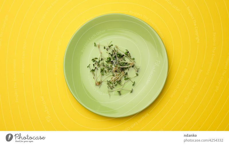 Grüne Sprossen von Chia, Rucola und Senf in einem weißen runden Teller, Ansicht von oben. Ein gesundes Nahrungsergänzungsmittel mit den Vitaminen C, E und K