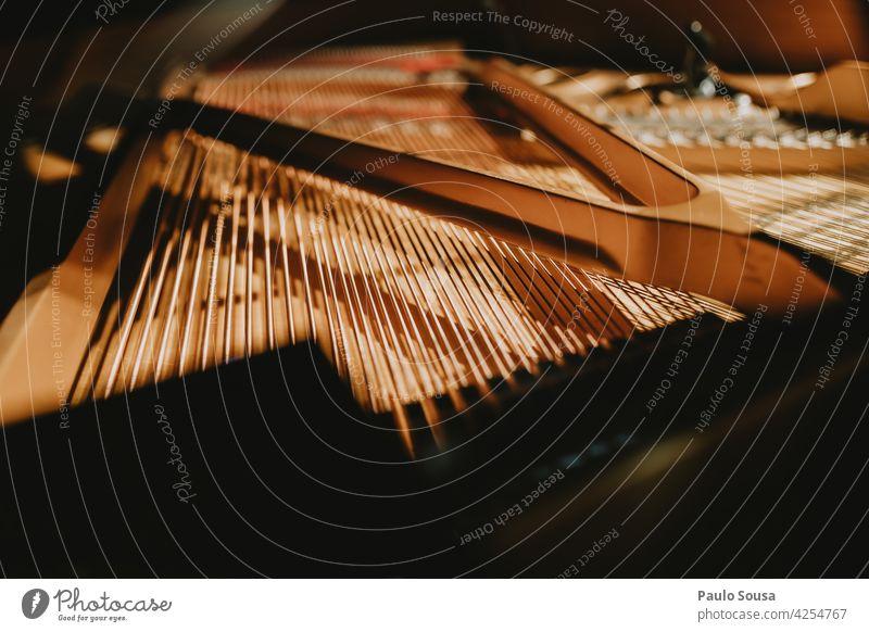 Nahaufnahme Klaviersaiten Klavierunterricht Klavierschemel Musik Musikinstrument Klavier spielen Musiker Konzert Tasteninstrumente musizieren Farbfoto Finger