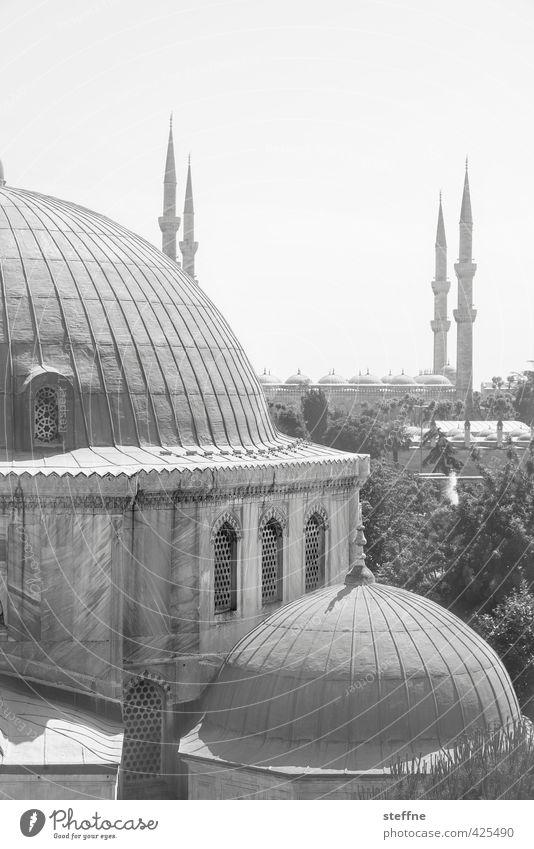 Orient Istanbul Türkei Kirche ästhetisch außergewöhnlich Moschee Blaue Moschee Hagia Sophia elegant Islam Naher und Mittlerer Osten Minarett Kuppeldach