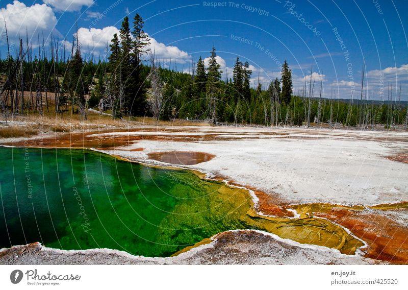 Wasserfarben Himmel Natur Ferien & Urlaub & Reisen Wasser Farbe Baum Landschaft Wald Umwelt Reisefotografie Klima Tourismus Urelemente Abenteuer USA Tanne