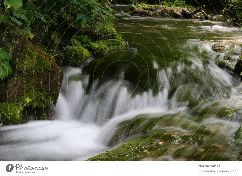 Bach schäumen Gischt Wasser kleiner fluss Fluss Natur